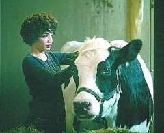Fringe_Cow_and_Astrid